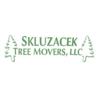 Ezific web development for Skluzachek Tree Movers